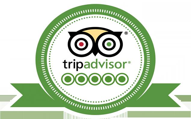 Cải thiện thứ hạng và đạt #1 trên TripAdvisor thông qua 20 bước