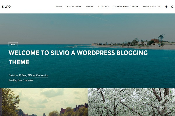 silvio-mau-website-du-lich-dep