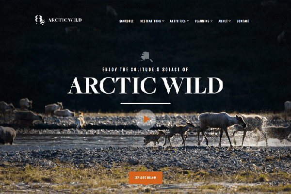 website du lich noi tieng the gioi Arcticwwild