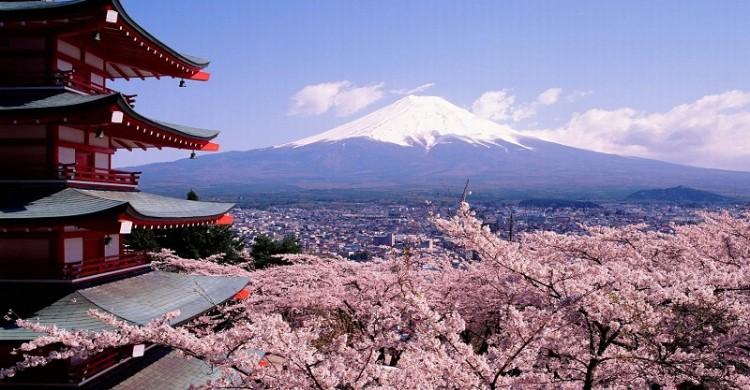 """Cách làm du lịch """"bá đạo"""" của người Nhật"""